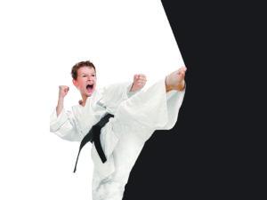 Stage di Karate – 1^ memorial Andrea Zen