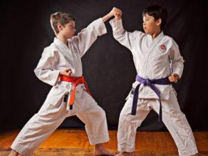 Nuovo Corso di Karate – dal 3 ottobre al 28 maggio 2020